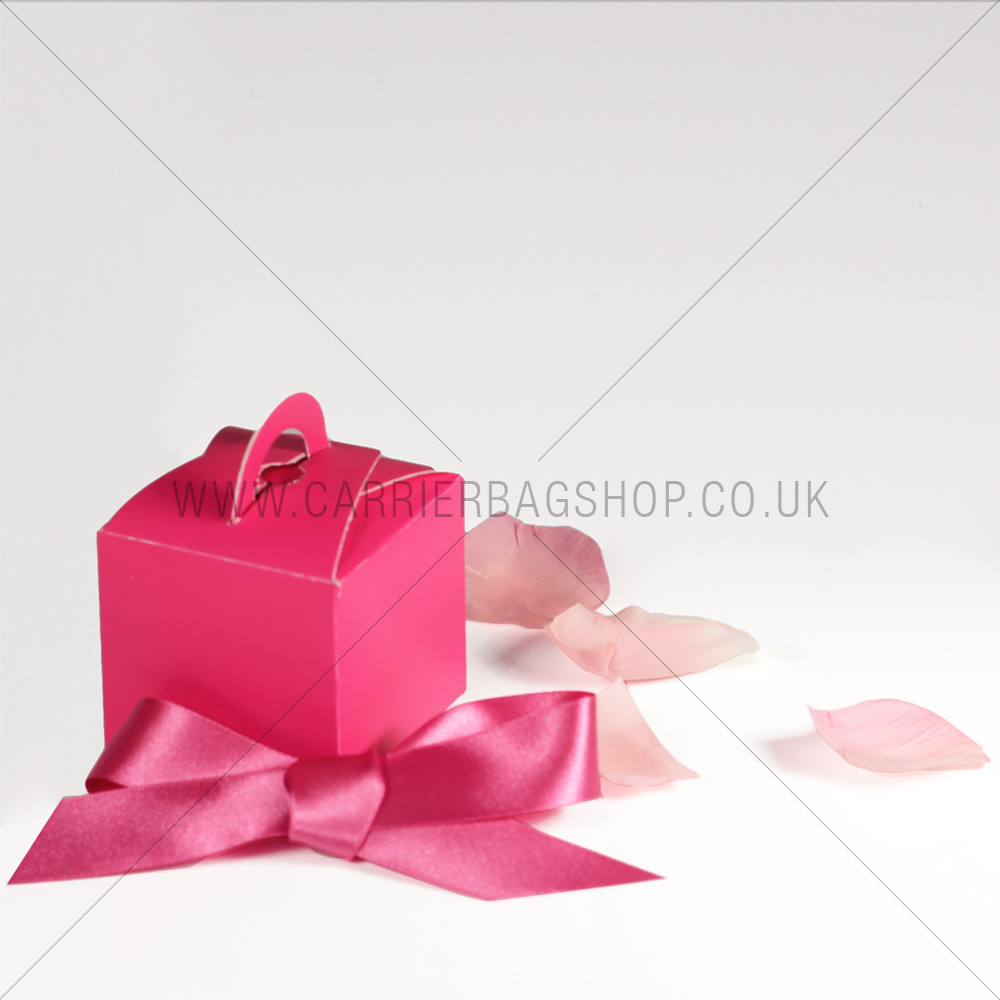 Mini Gift Boxes Fuchsia Gift Packaging Carrier Bag Shop