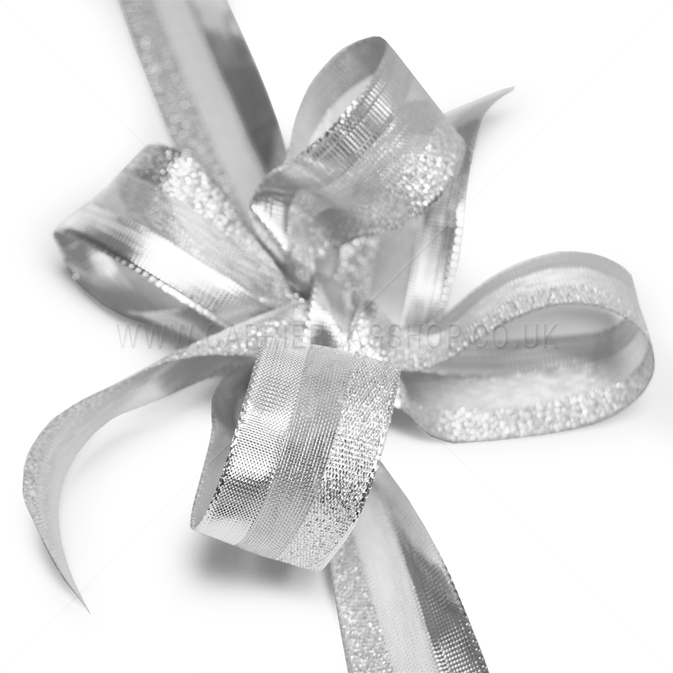 Silver Sheer Glitz Ribbons From Carrier Bag Shop Tone And
