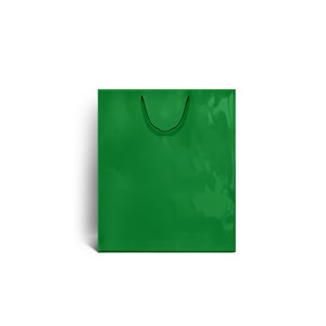 Green Gloss Boutique Paper Bags