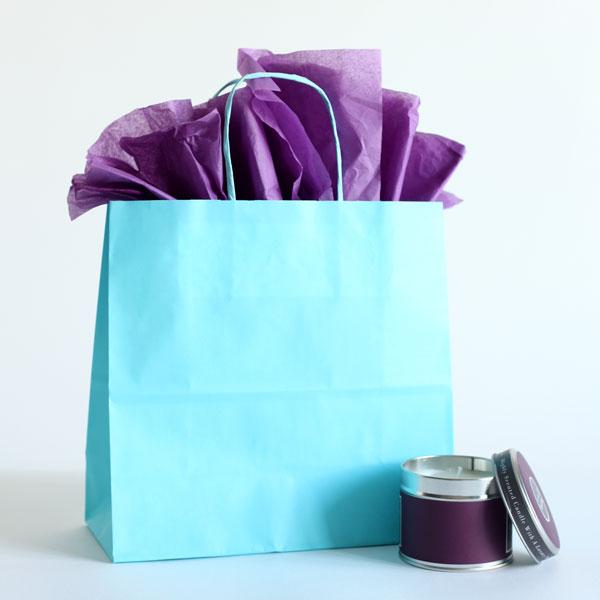 Light Blue Paper Carrier Bag